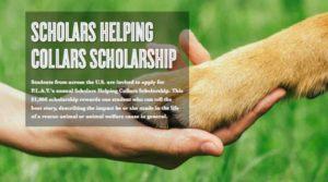 Scholars HelpingCollars Scholarship